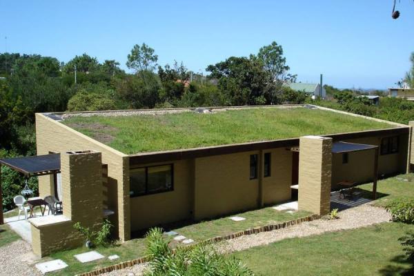 Techos verdes a mitigar el impacto ambiental noticias for Cual es el techo mas economico para una casa
