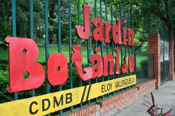 Tercera exposici n nacional de orqu deas har el jard n for Actividad de perros en el jardin botanico de caguas