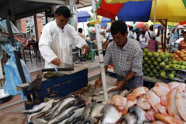 Resultado de imagen para venta de pescado