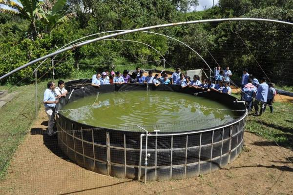Estudiantes de confines ejemplo de productividad Estanques para piscicultura