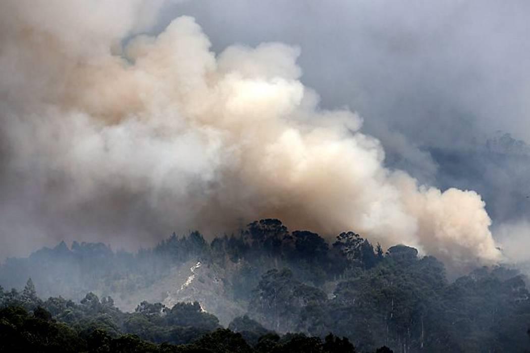 Cinco helicópteros y 600 socorristas trabajan para extinguir incendio en Bogotá