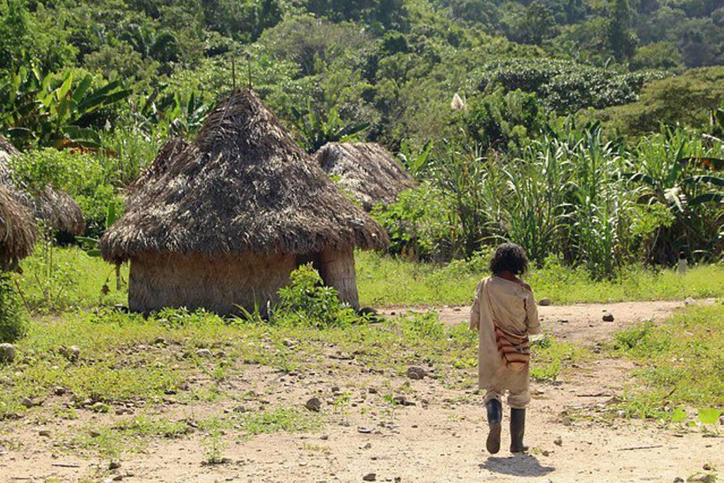 Por desnutrición han muerto seis niños wayúu este año