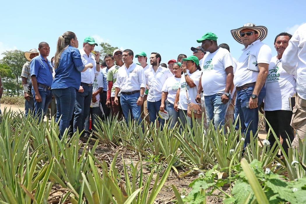 Colombia lograría sembrar 500 mil hectáreas nuevas