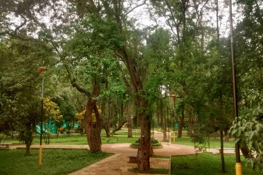 Se reanudan trabajos en parque Gallineral