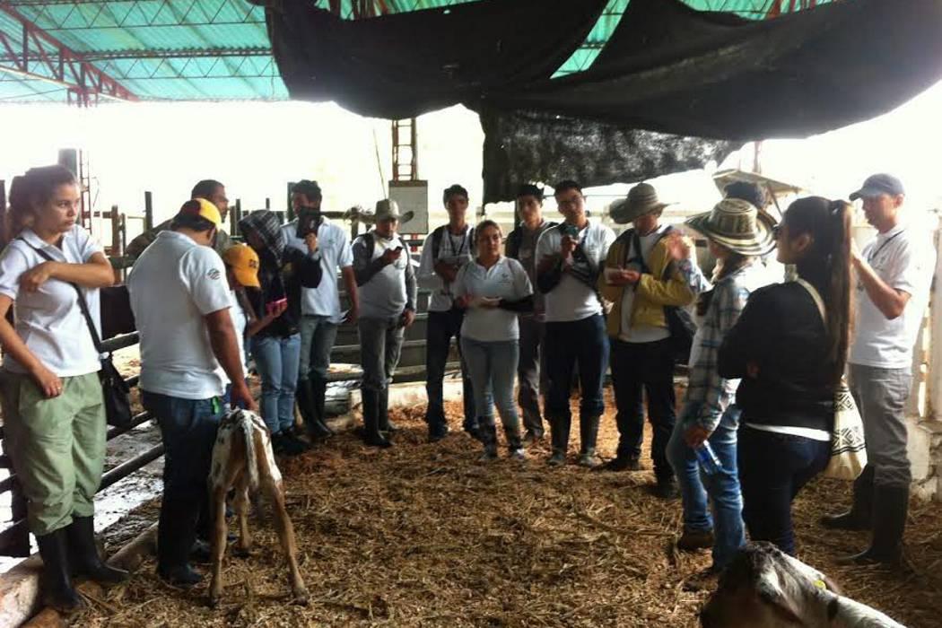 Sena ofrece formación para el sector agropecuario local