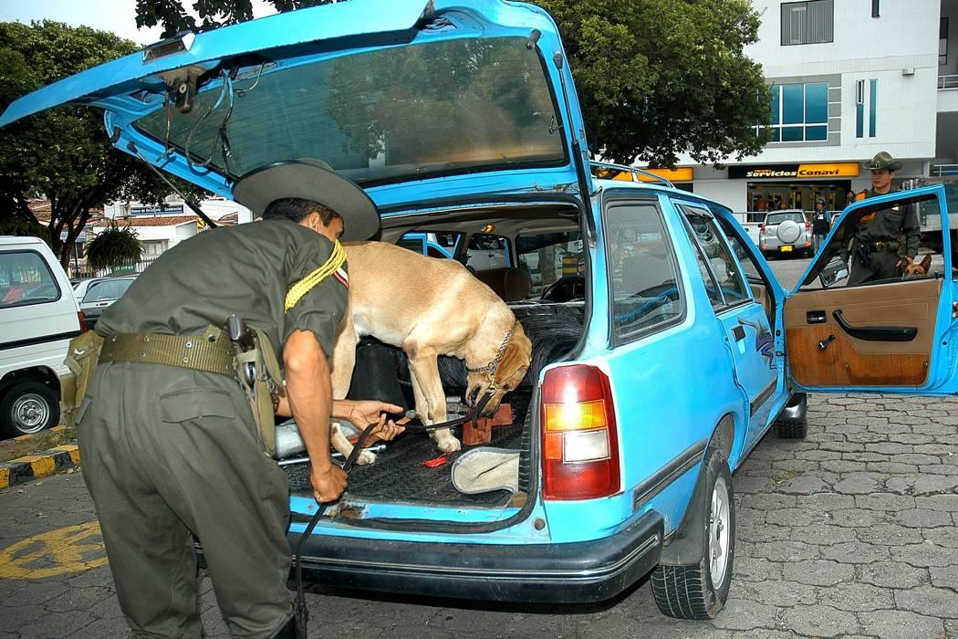 'Vacaciones Seguras y en Paz': policiales al servicio de la comunidad porteña