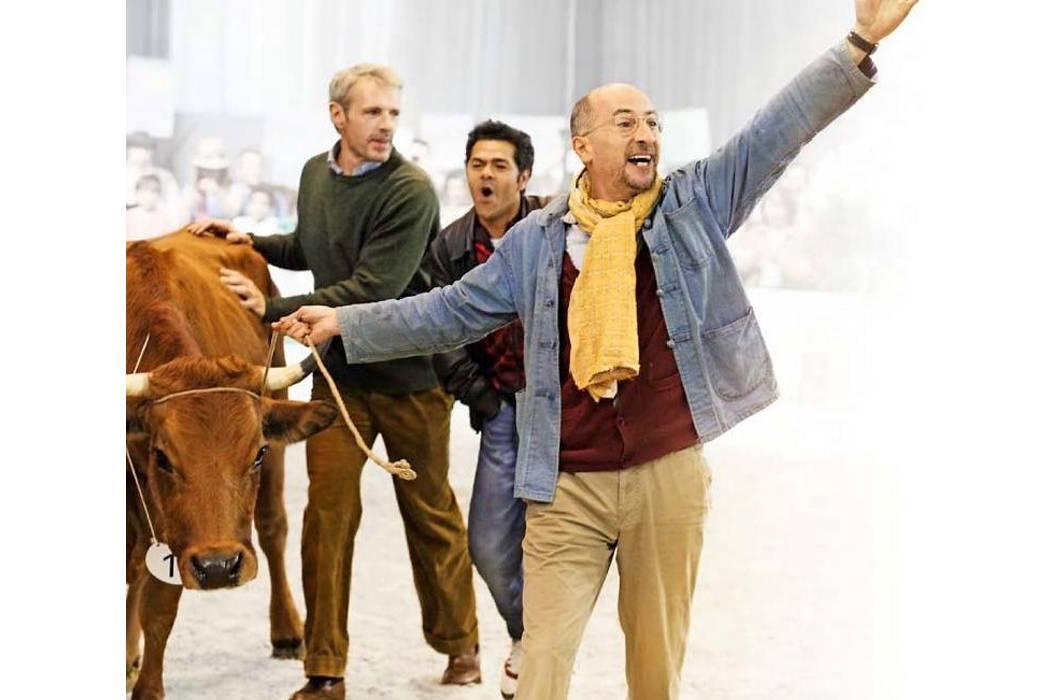 Llega, 'No se metan con mi vaca'