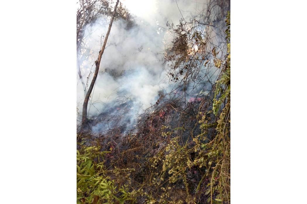 Comunidad de Agua Blanca controló un incendio forestal