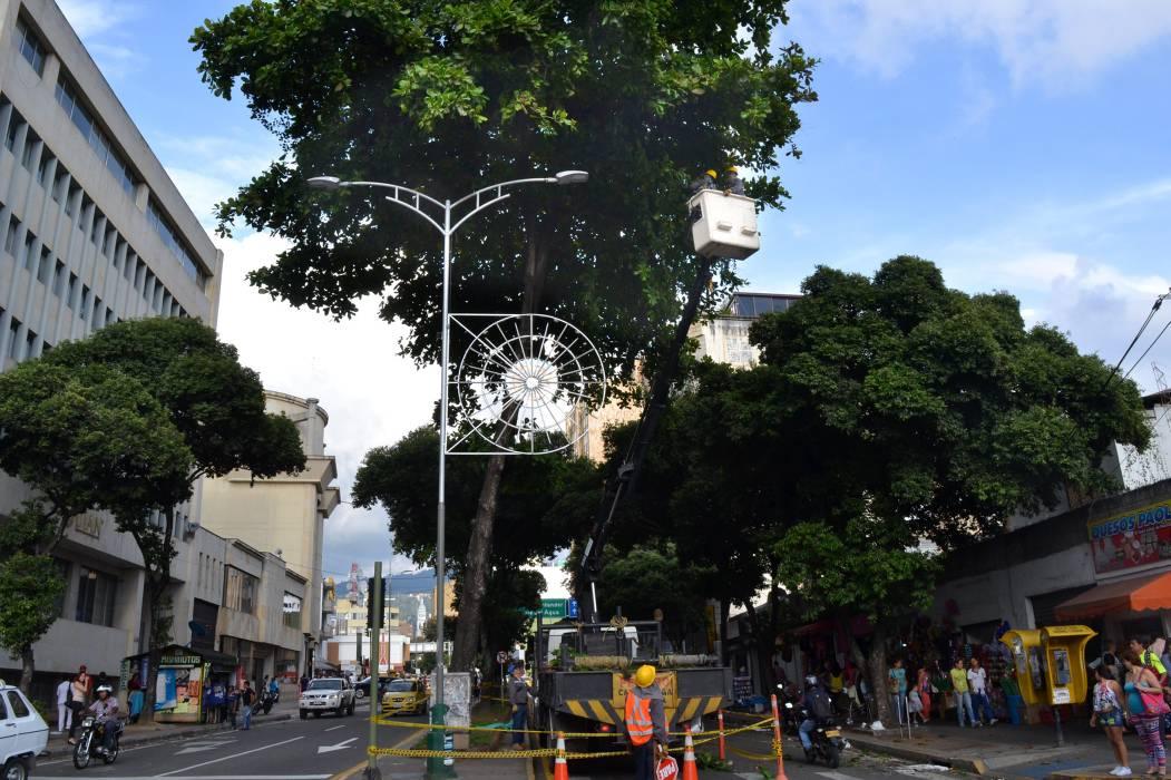 Essa iluminará la Navidad en Bucaramanga y su área desde el 30 de noviembre