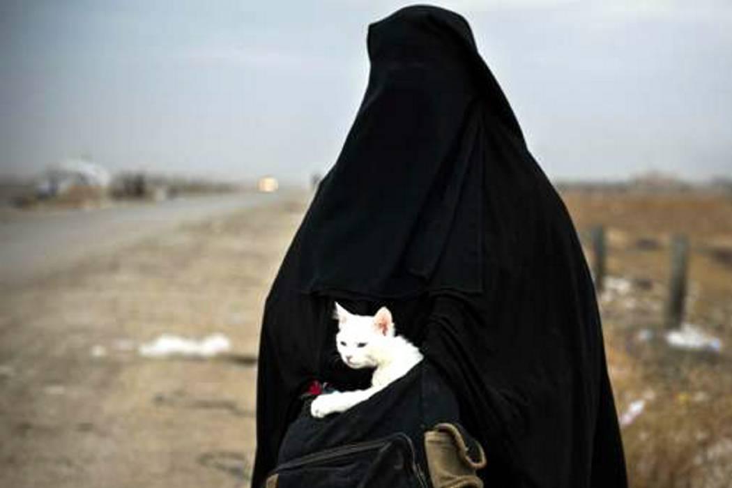 La foto que retrata el dramático éxodo desde Mosul