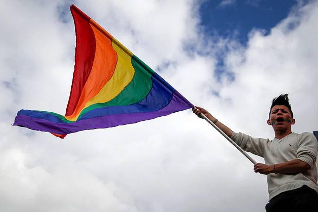 Santos no apoya el referendo contra la adopción gay