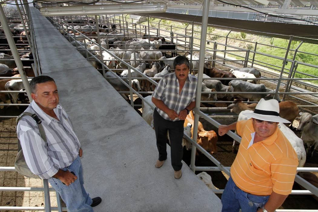 Exportación de carne va por la mitad de la comercializada en 2014