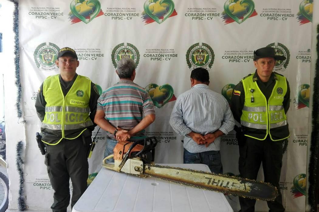 Capturados por talar árboles sin permiso