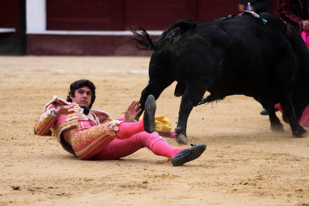 Proyecto de ley propende prohibir las corridas de toros en Colombia