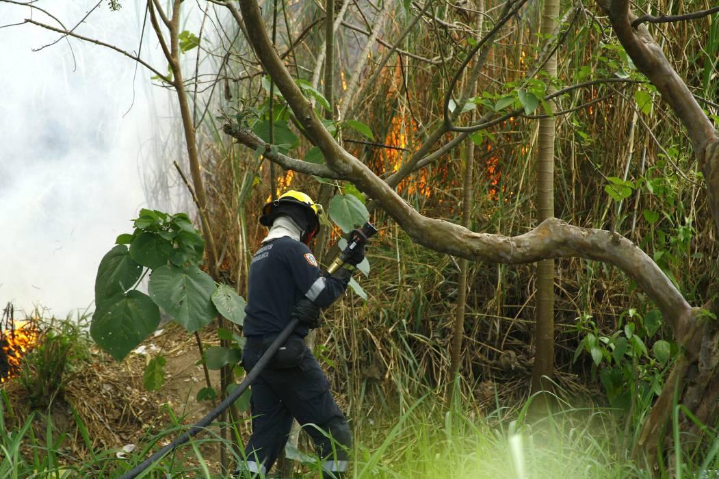 41 municipios en alerta por incendios forestales