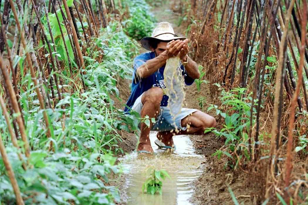 Proyecto de Ley busca ordenar riego y drenaje