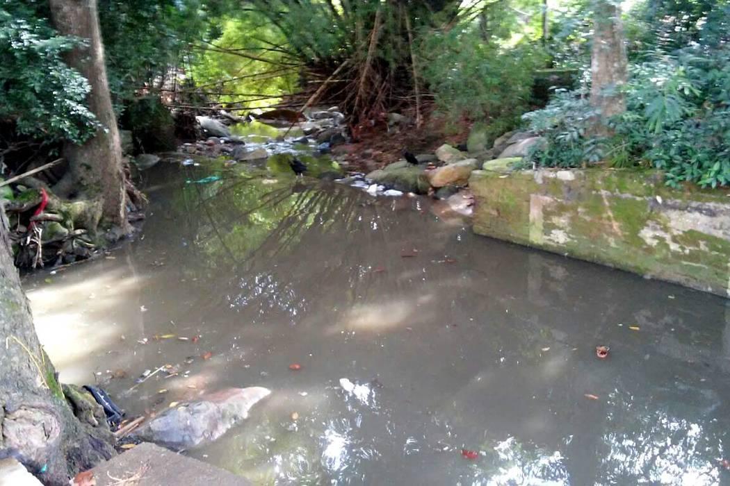 La falta de cultura afecta las fuentes hídricas locales