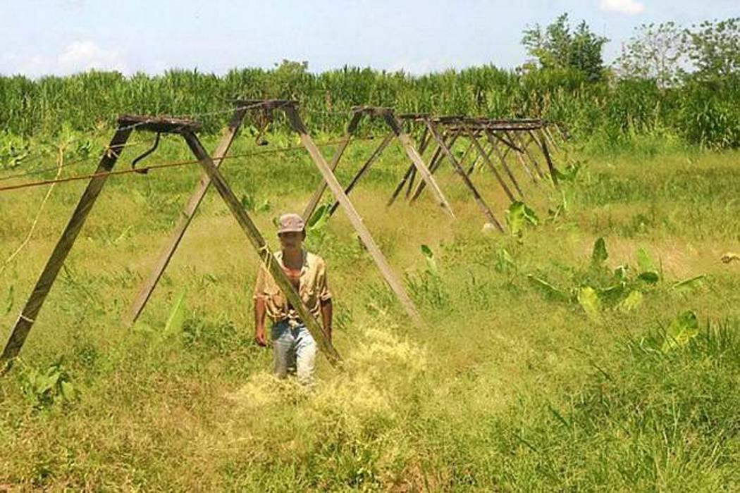 Piden derogar decreto de la Reforma Rural Integral