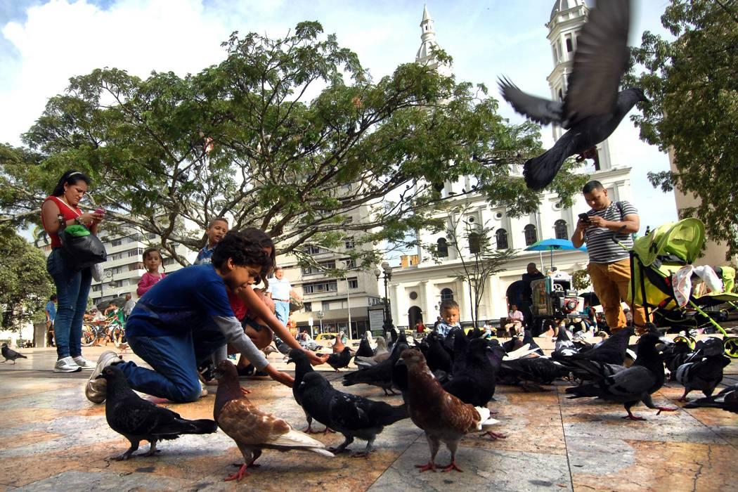 Así le fue a Bucaramanga y el área en los índices de calidad de vida