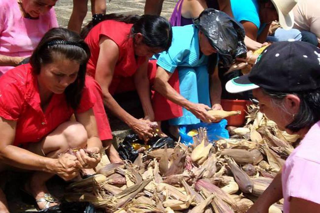 Hoy se inicia el XV Festival del Millo y el Maíz