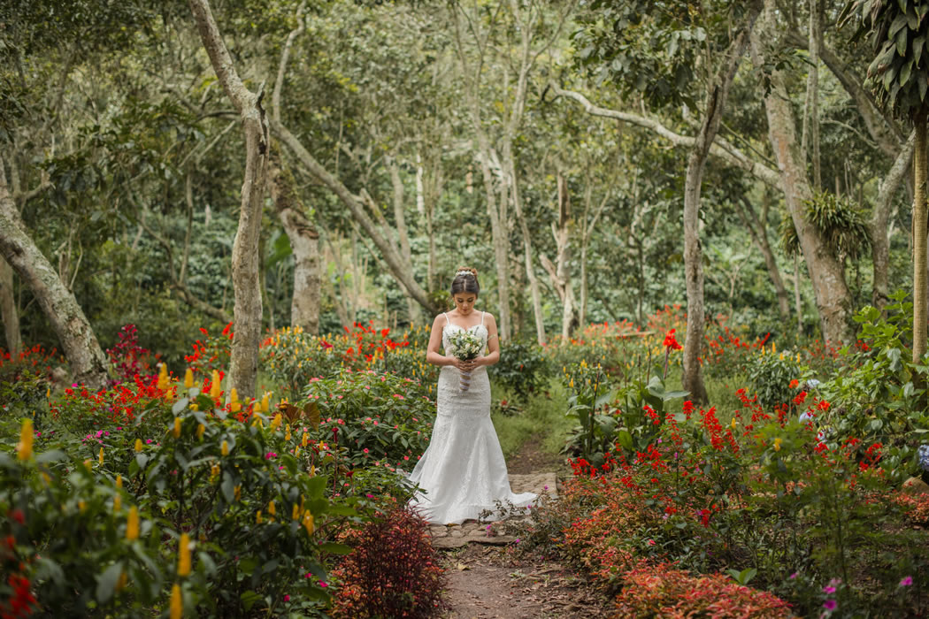 Viva una boda llena de encanto e innovación