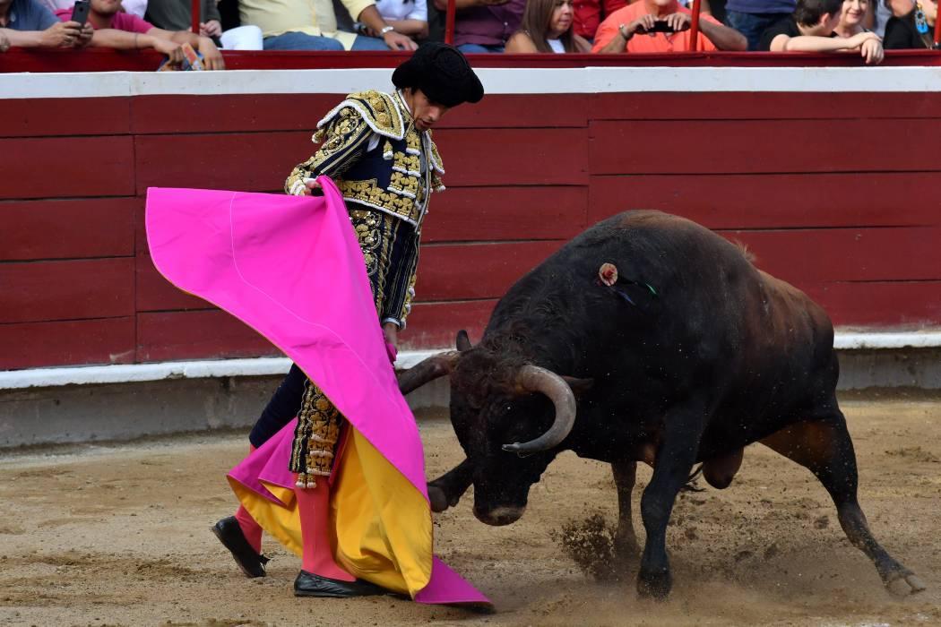 Mininterior se opone a  las corridas de toros y  pide legislar a la Cámara