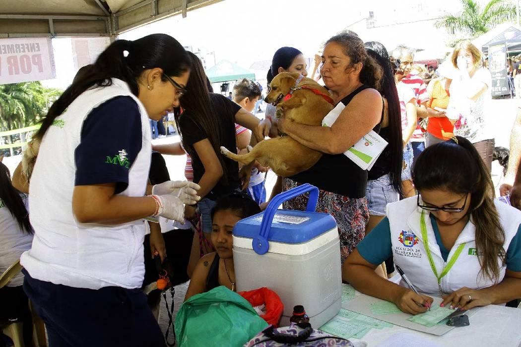 Las 'Ferias Saludables' han favorecido a seis comunidades