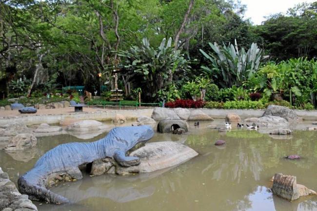 Qued reabierto el jard n bot nico eloy valenzuela rea for Arriendos en ciudad jardin sur bogota