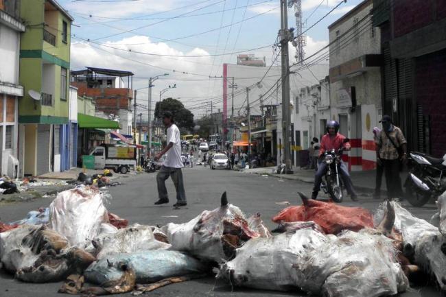 Suministrada Vicente Mora/ VANGUARDIA LIBERAL