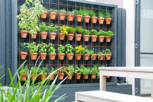 Huertas verticales un jard n con beneficios for Proyecto jardines verticales