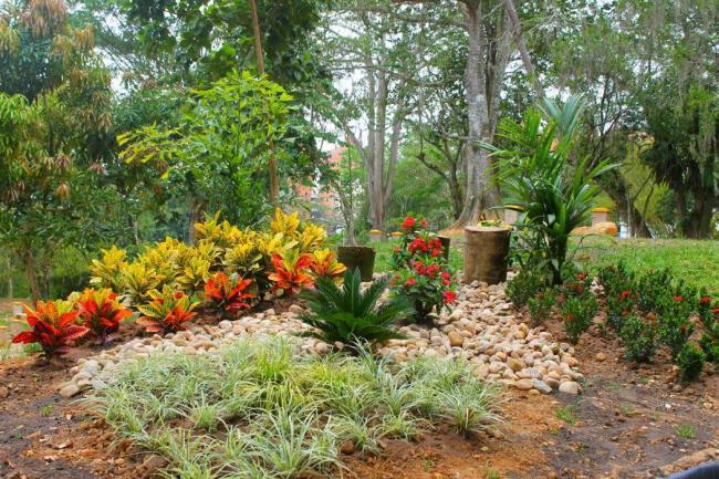 Parques jardines y cultivos for Parques y jardines