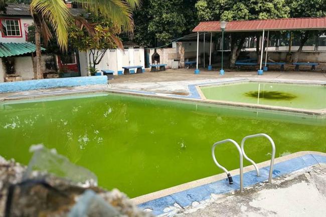 Como se hace una piscina piscina with como se hace una for Piscinas para perros baratas