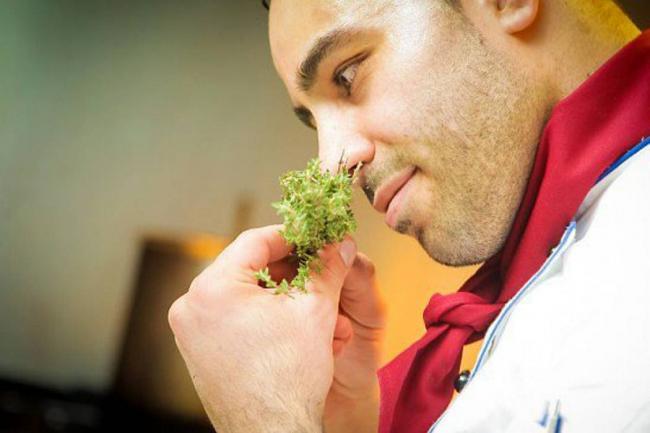 El olor de la comida te puede hacer engordar