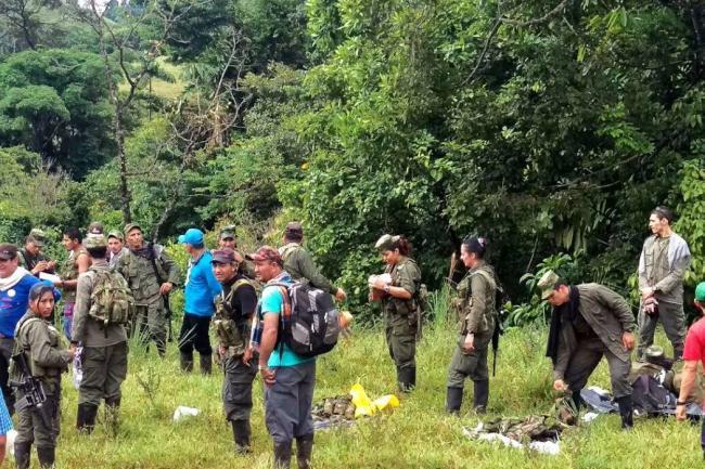 Indultaron a 7.696 ex guerrilleros de las FARC