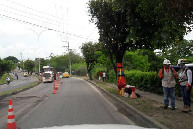 Concesión Ruta del Cacao / VANGUARDIA LIBERAL