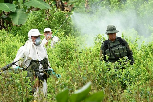 Cocaína colombiana representa el 92% de lo incautado en Estados Unidos