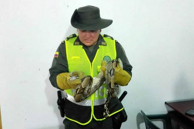Suministrada por Policía Mebuc /VANGUARDIA LIBERAL