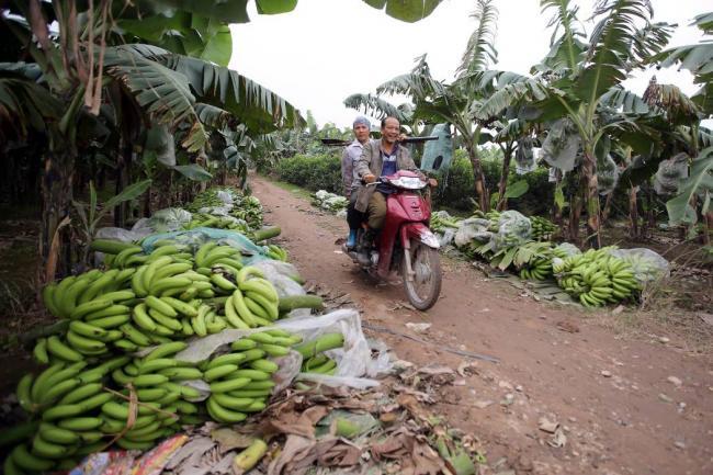 Economía de Colombia crece 2% en el tercer trimestre