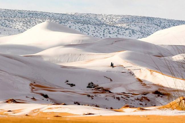 El desierto del Sáhara, cubierto de nieve (fotos)