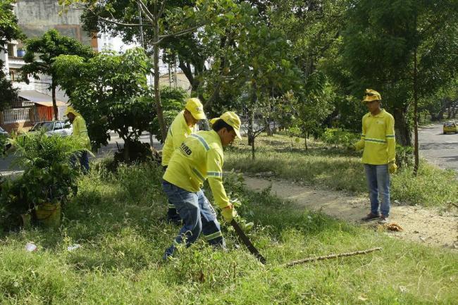 Destinan millones para mantenimiento de parques en bucaramanga bucaramanga - Oficinas de atencion a la ciudadania linea madrid ...
