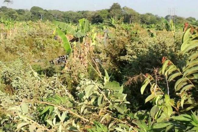 Disidencias de las Farc volaron una torre de energía en Guaviare