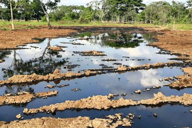 Coveñas: Ecopetrol denuncia nuevo ataque contra el oleoducto Caño limón