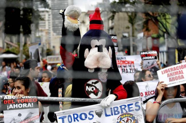 Anulada consulta popular antitaurina en Bogotá