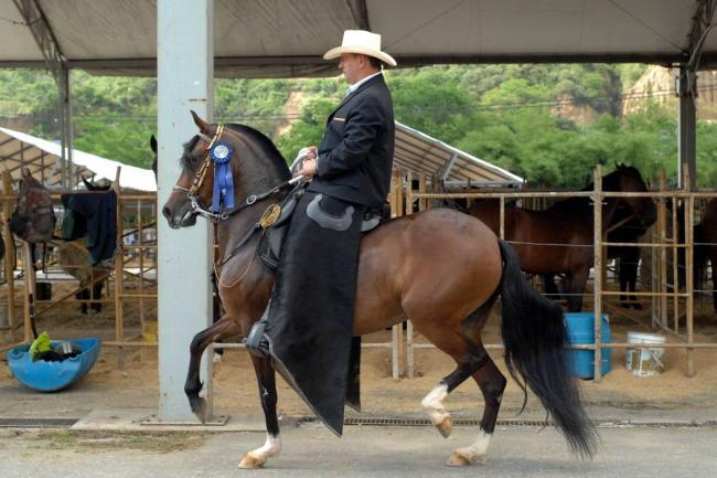 Jaime del Río/ VANGUARDIA LIBERAL