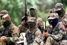 En carta enviada a Piedad Córdoba de Colombianos y Colombianas por la Paz, el grupo guerrillero Eln propone una tregua bilateral.