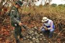 500 tortugas mueren en incendio forestal en Santander