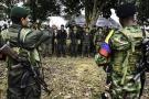 Mindefensa reveló los detalles del cese al fuego definitivo con las Farc