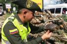 Policía de San Gil realizó control de flora y fauna
