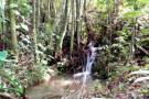 Se aislarán 13 fuentes hídricas para cuidado del agua ante el verano