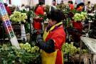 Participación laboral de la mujer aumentó 10% en el país